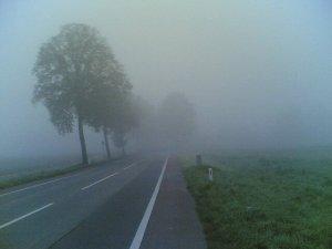 wpid-fog-in-delhi.jpg