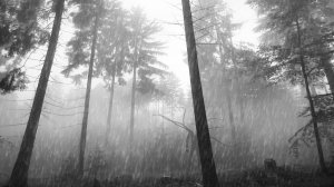 raining_forest_slender_by_binary_map-d6ffpxg