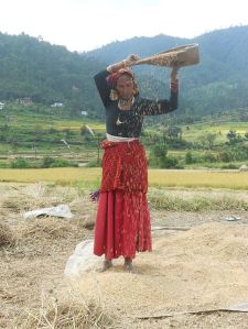 Rice_winnowing,_Uttarakhand,_India