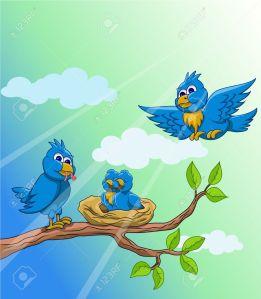 Loving-bird-feeding-in-the-morning