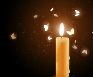 moths-near-a-candle