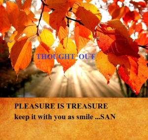 PLEASURE IS TREASURE