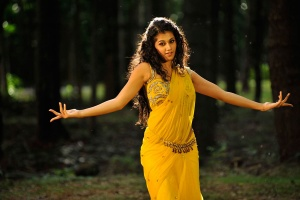 taapsee spicy posing photos stills from mogudu telugu movie hero