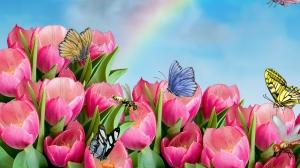 Butterflies-And-Bees-Flowers-Pink-Wallpaper