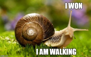 snail walking with victory sign
