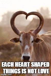 HEART SHAPED HORN