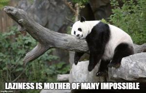 Lazy - Panda