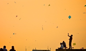 Makar sankrati kite