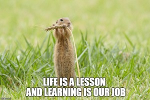 european ground squirrel  - quote about life