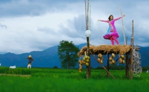 Girl dancing in farm