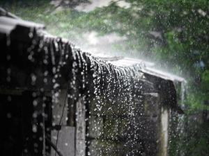 Monsoon Rain India