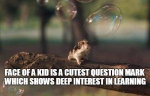 animal kid-quote