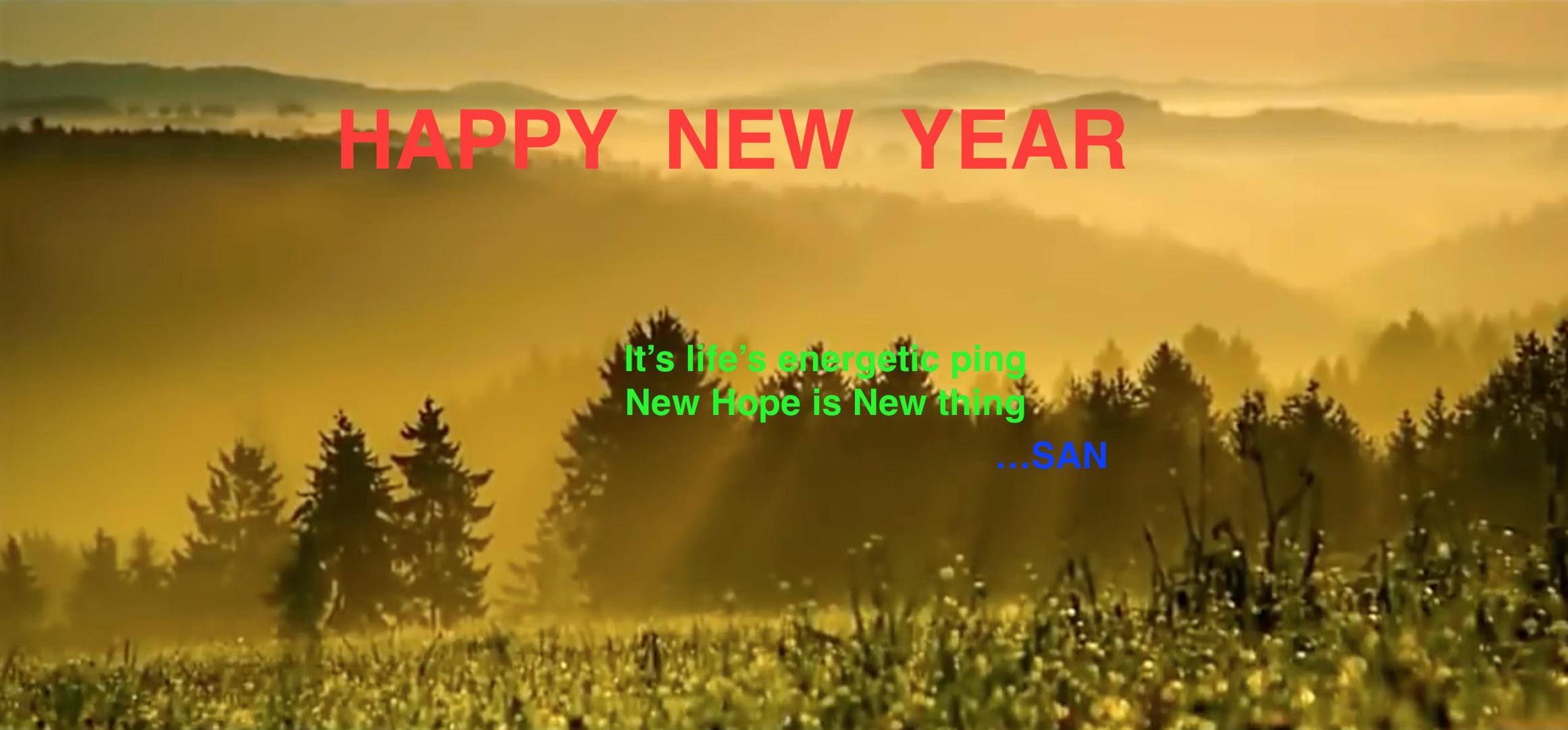 Happy Year 2017